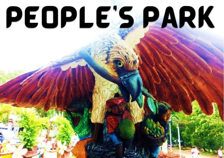 Philippine eagle with Bagobos at People's Park