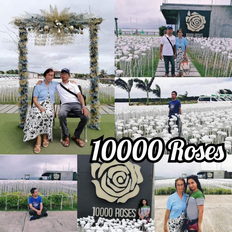 PhotoCollage_20200129_024129755